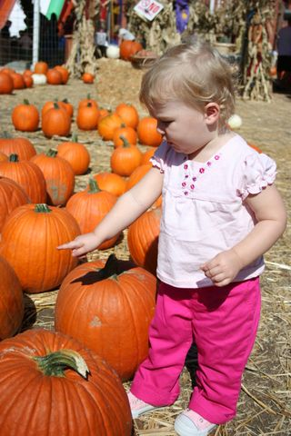 October pictures 075